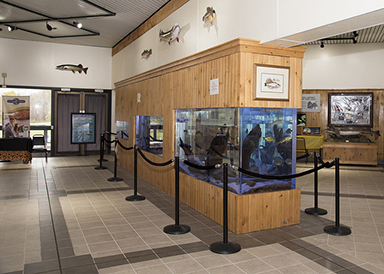 Salmon River Fish Hatchery ribbon cutting