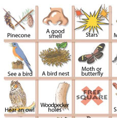 A portion of a sensory bingo sheet that is played outdoors
