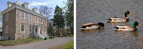 Van Cortlandt Park - NYS Dept. of Environmental Conservation