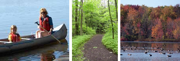 A composit of 3 photos:canoeing, trail, geese