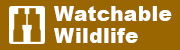 The watchable wildlife logo