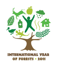 Logo of a tree with a canopy representing the benefits of forests
