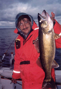 angler with large adult walleye