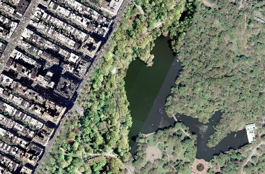 Central Park Lake offers an opportunity to experience nature within NYC