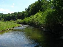 View of Chenunda Creek below Roeske Road.