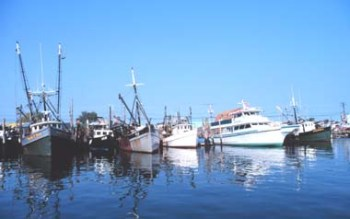 commercial fishing vessels docked