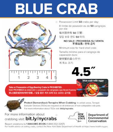 Blue crab recreational regulations sign in english, spanish, chinese, korean