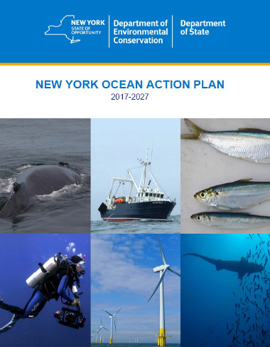 Image of the cover of the New York Ocean Action Plan PDF
