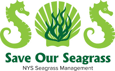 "Image of the NYS Seasgrass Management ""Save Our Seagrass"" logo"