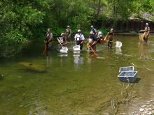 DEC staff electrofishing on Elton Creek.