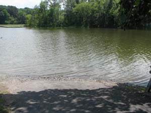 Photo of Esopus Creek