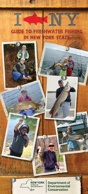 Cover image of I FISH NY Guide to Great Lakes Fishing brochure.