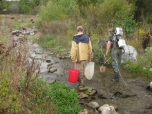 Fish sampling on Goodell Creek.