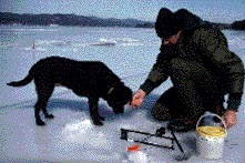 photo of ice angler with dog