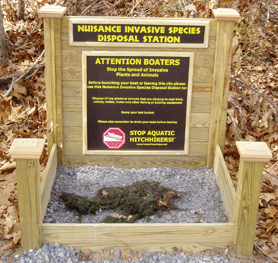 Image of an invasive species drop box