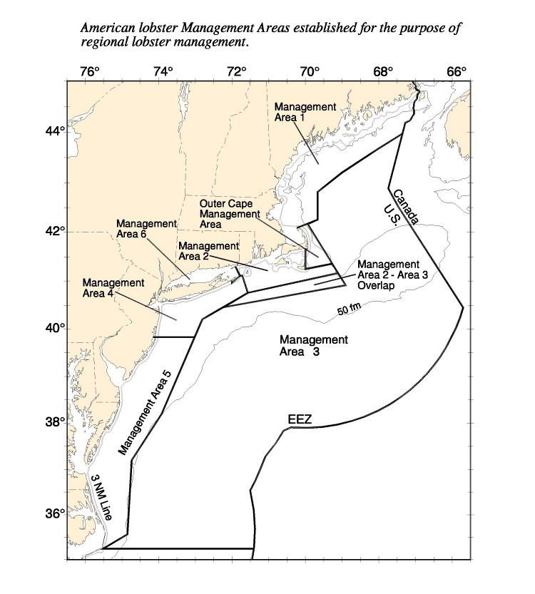 Lobster Management Areas