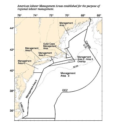 Map of Lobster Management Areas