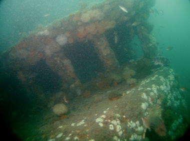 Mandy Ray vessel underwater