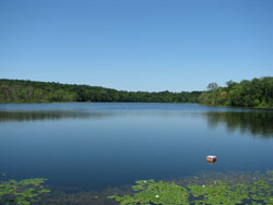 Image of Mohansic Lake.