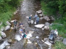 Fisheries staff sampling on Oatka Creek at Route 19 bridge below Rock Glen.