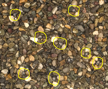 A photo of pebbles with 8 lead split shots circled with yellow color
