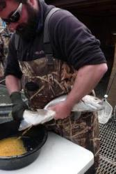 Fisheries technician stripping eggs from rainbow trout