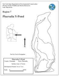 Picture of Pharsillia y-pond contour map