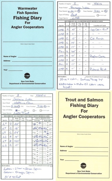 Examples of Angler Diaries