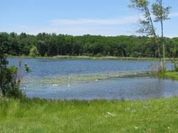 Rudd Pond Nys Dept Of Environmental Conservation