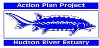 Logo of the Hudson River Estuary Program