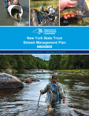 Trout stream management plan cover