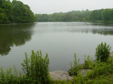 Van Cortlandt Lake and the surrounding forests