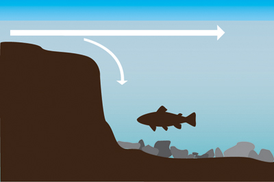 Graphic of fish sitting behind a drop-off