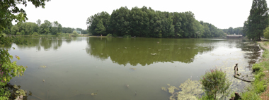 Panoramic view of Willowbrook Lake