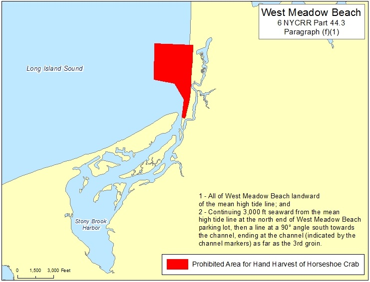 prohibited area for hand harvest of horseshoe crab in West Meadow Beach