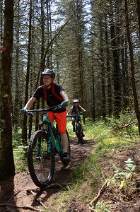 two people mountain biking on a trail in a forest