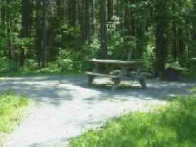 An accessible campsite with picnic table
