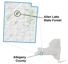 Allen Lake State Forest Locator Map