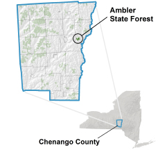 Ambler State Forest locator map