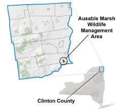 Ausable Marsh WMA locator map
