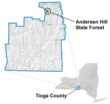 Andersen Hill State Forest locator map