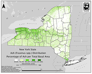 Map of New York State showing distribution of ash tree species before emerald ash borer