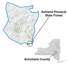 Ashland Pinnacle State Forest locator map