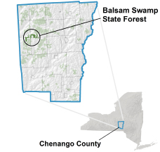 Balsam Swamp State Forest locator map