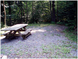 Stone surface and accessible picnic table