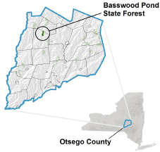 Basswood Pond State Forest locator map