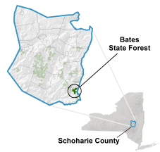 Bates State Forest locator map