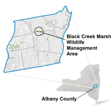 Black Creek Marsh WMA Locator Map