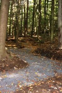The wheelchair accessible Bear Slide trail