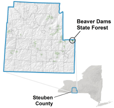 Beaver Dams State Forest locator map